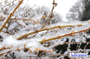 0917-frozen